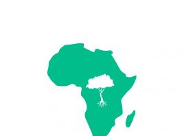 khaya _logo